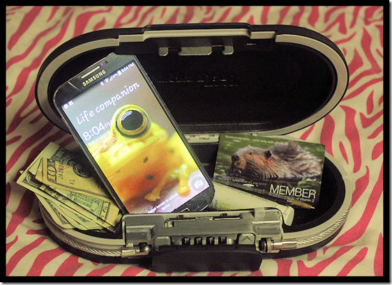Master Lock SafeSpace Portable Mini Safe